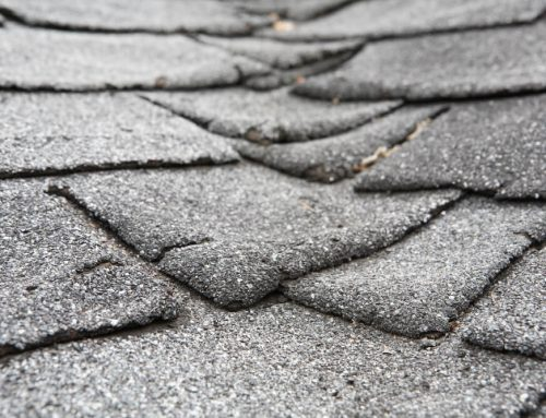 Roof Repair or Roof Replacement in 2019: Which is The Better Option?