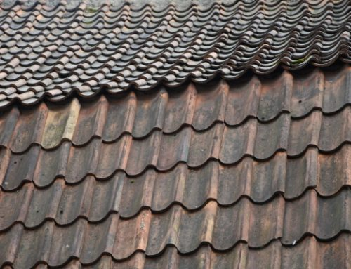 London ON Metal Roof: Everything You Need to Know About Metal Roof Coatings